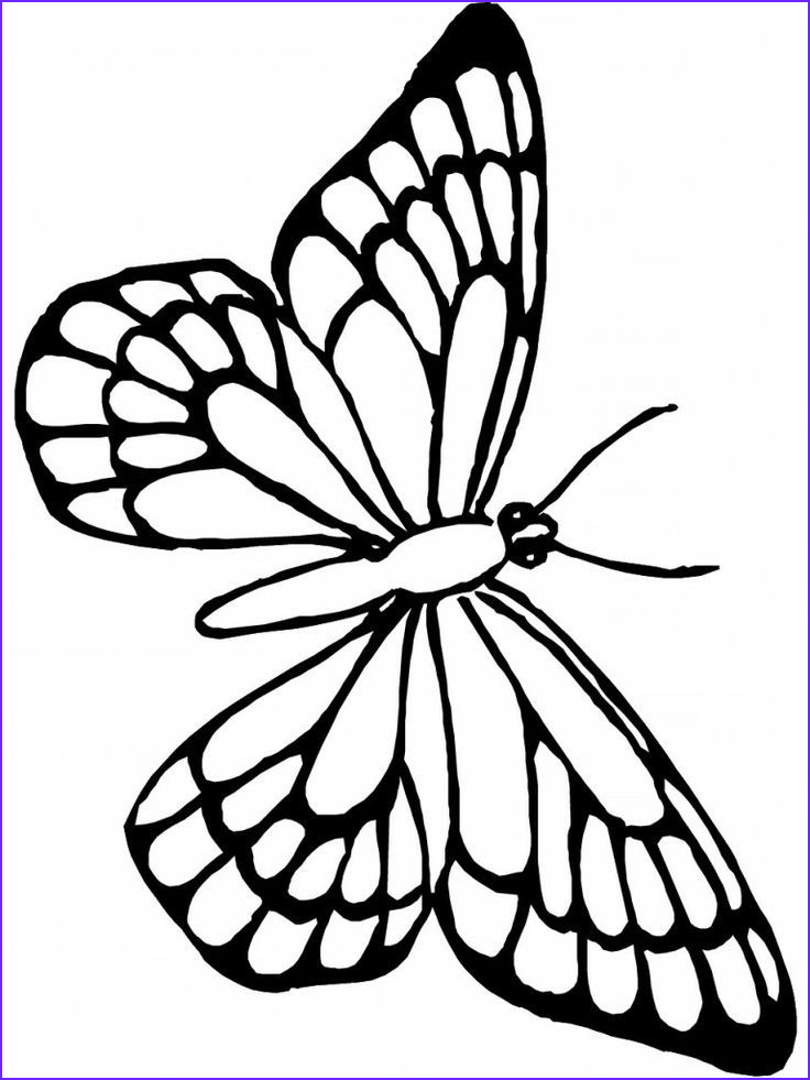 Monarch butterfly Coloring Page Elegant Photos Monarch butterfly Coloring Page Az Coloring Pages