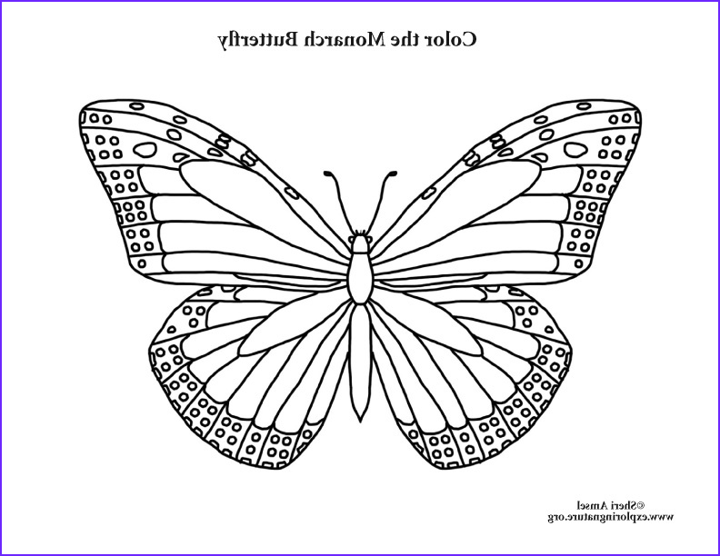 Monarch butterfly Coloring Page Inspirational Photography butterfly Monarch Coloring Page