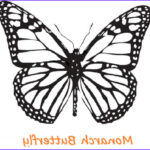 Monarch Butterfly Coloring Page Unique Image Butterfly Coloring Pages