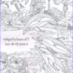 Nature Coloring Books For Adults Awesome Photography 25 Unique Dolphin Craft Ideas On Pinterest