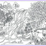 Nature Coloring Books For Adults Elegant Photos Items Similar To Printable Waterfall Nature Scene Coloring