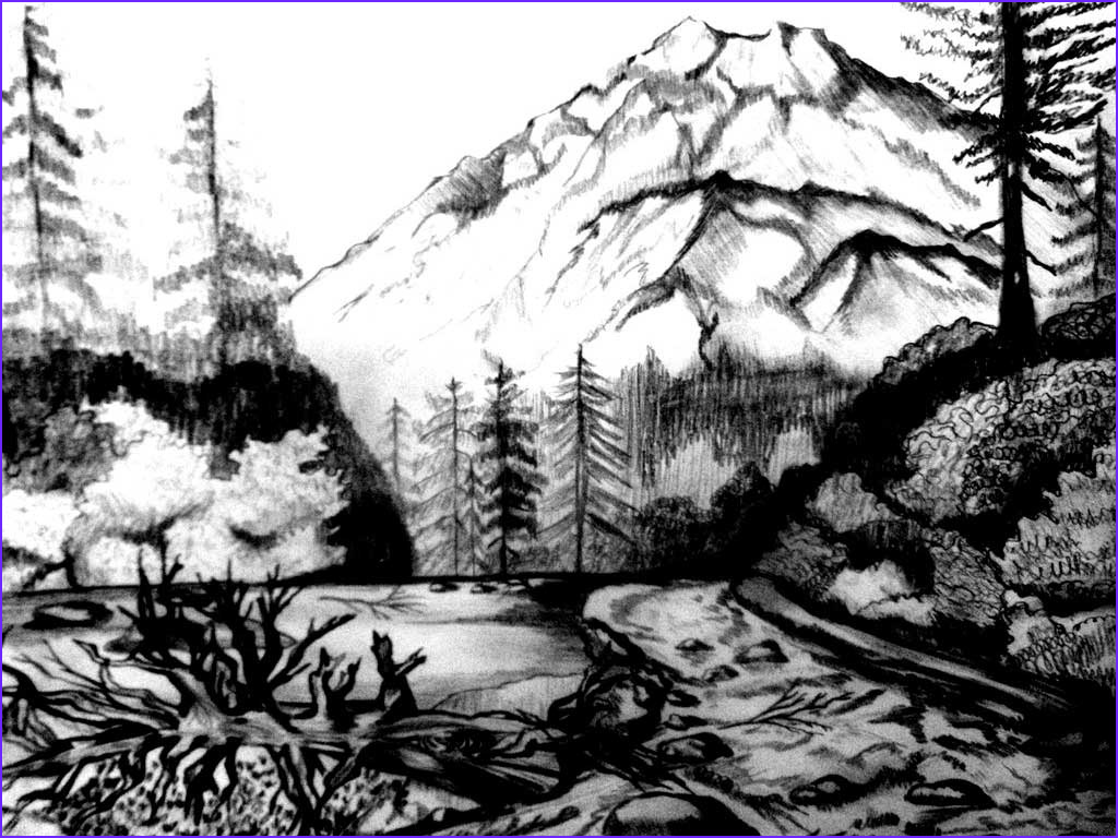 Nature Coloring Pages Awesome Stock Nature Coloring Pages for Adults