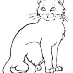 Realistic Cat Coloring Pages Unique Photos Kraken Coloring Pages at Getcolorings