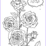 Roses Coloring Books Elegant Images Rose Colouring Page