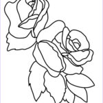 Roses Coloring Books Luxury Photos Flower Coloring Pages