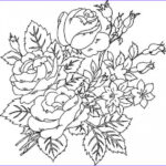 Roses Coloring Books New Stock 20 Free Printable Roses Coloring Pages For Adults