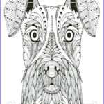 Schnauzer Coloring New Collection Schnauzer Caramel Coloring Pages Print Coloring