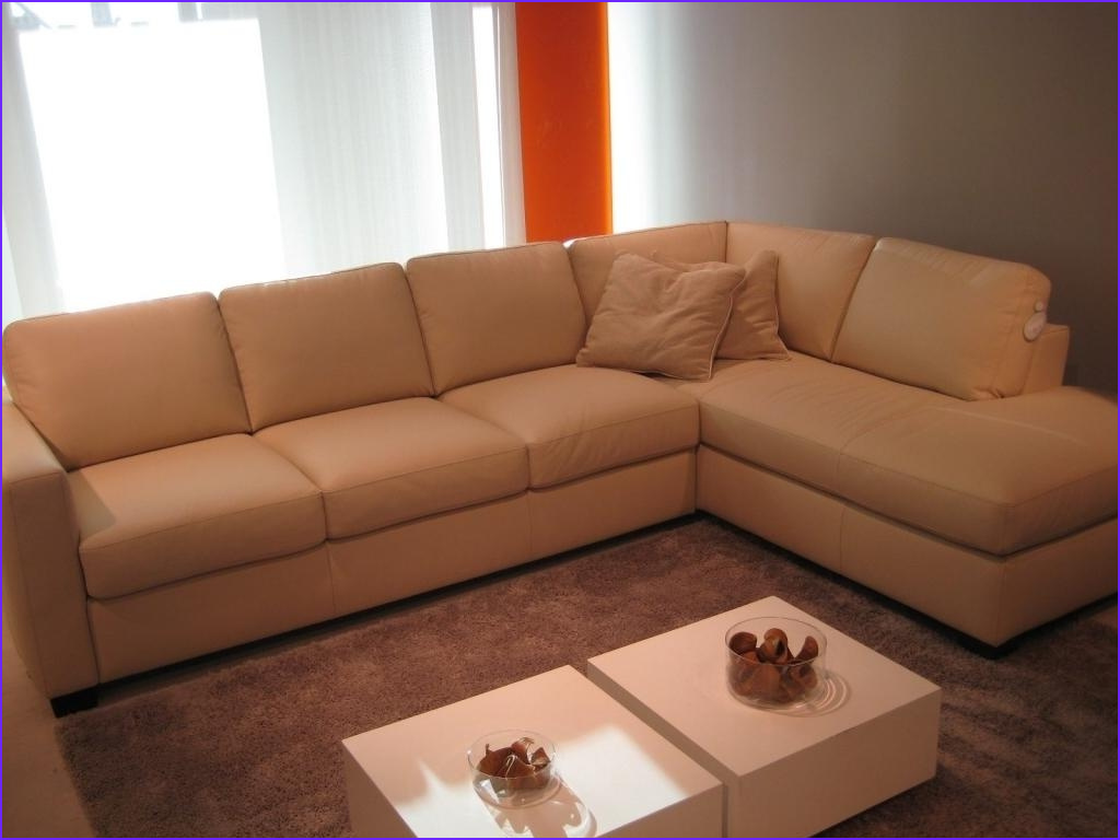 Sofa Coloring Awesome Photography 2018 Latest Camel Colored Leather sofas