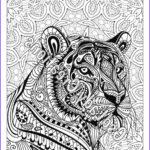 Tiger Coloring Pages for Adults Inspirational Photography Zen Tiger Animal Art Page to Color Zentangle Animal