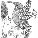 Wildlife Coloring Books Best Of Photos Plex Coloring Pages Animals Coloring Home