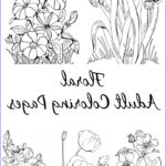 Adult Coloring Pages Luxury Stock 10 Floral Adult Coloring Pages The Graphics Fairy
