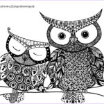 Adult Coloring Pages Owl Awesome Photos Coloring Sheet – The Green Dragonfly