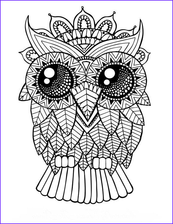 Adult Coloring Pages Owl Beautiful Photos Pin by Myths Time On Blog Page Art