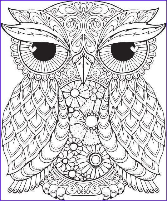 Adult Coloring Pages Owl Best Of Image 1293 Best Owls Black & White Images On Pinterest