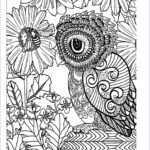 Adult Coloring Pages Owl Best Of Photos Awesome Owls Coloring Book By Fox Chapel Publishing