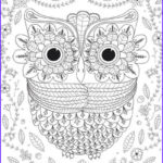 Adult Coloring Pages Owl Inspirational Photos 44 Easy Craft Projects For Adults