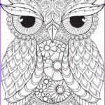 Adult Coloring Pages Owl Unique Images 25 Best Ideas About Owl Coloring Pages On Pinterest