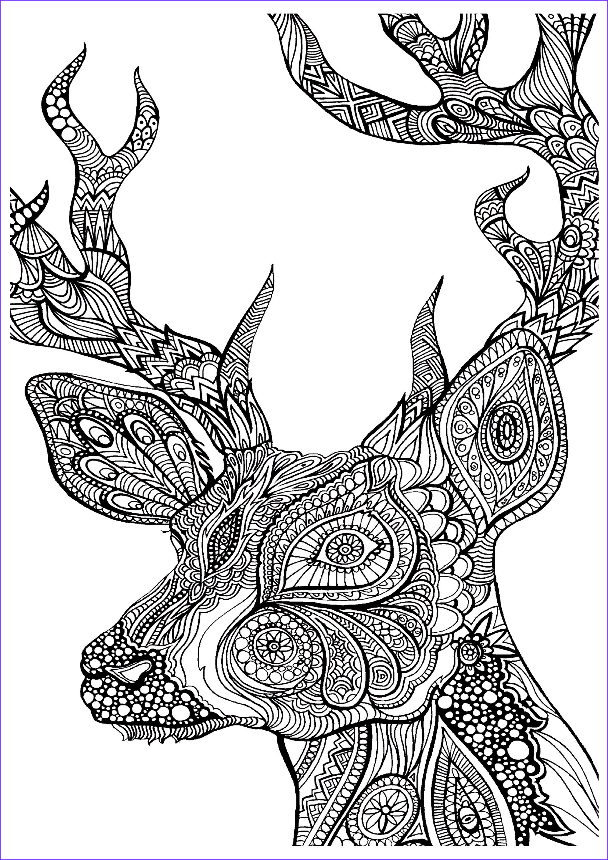 19 of the best adult colouring pages
