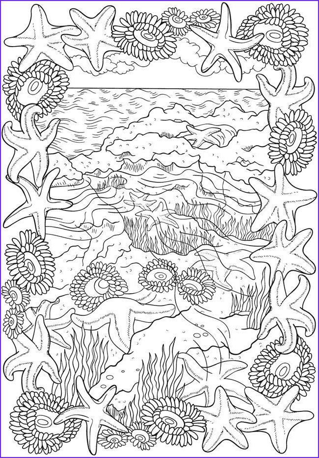 Adult themed Coloring Book Elegant Images Bliss Seashore Coloring Book Your Passport to Calm