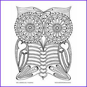 Adult themed Coloring Book Elegant Photography Day Of the Dead Owl Coloring Page Artist Jennifer Stay