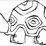 Animal Coloring New Photography Coloring Now Blog Archive Animals Coloring Pages