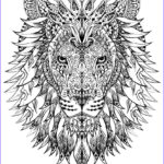 Animal Coloring Picture Awesome Photos Adult Coloring Pages Animals Best Coloring Pages For Kids
