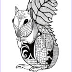 Best Coloring Books For Adults Beautiful Photos 809 Best Animal Coloring Pages For Adults Images On