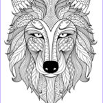 Best Coloring Books For Adults Inspirational Photos Best 25 Adult Colouring Pages Ideas On Pinterest