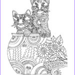 Cat Adult Coloring Book Beautiful Gallery 94 Best Images About Coloring Cats On Pinterest