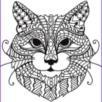 Cat Adult Coloring Book Beautiful Images Zentangle Cat Head Coloring Page