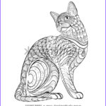 Cats Adult Coloring Book Beautiful Gallery Adult Stock Royalty Free & Vectors