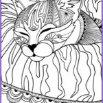 Cats Adult Coloring Book Best Of Collection Best Coloring Books For Cat Lovers Cleverpedia