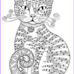 Cats Adult Coloring Book Best Of Stock The Girls Fabulous Colouring Book Amazon Hannah