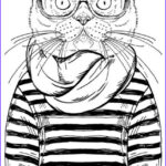 Cats Adult Coloring Book Inspirational Image Best Coloring Books For Cat Lovers
