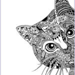 Cats Adult Coloring Book New Photos Pages Cat Head