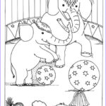 Circus Coloring Pages Beautiful Gallery Free Printable Circus Coloring Pages For Kids