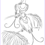 Coloring Pages Birds Beautiful Stock King Of Hollands Bird Of Paradise Coloring Page