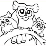 Coloring Pages For Preschoolers Unique Photos Cute Printable Owl Coloring Pages For Kids