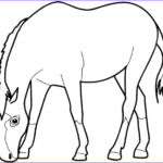 Coloring Pages Horses Beautiful Photos Fun Horse Coloring Pages For Your Kids Printable
