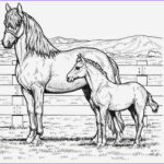 Coloring Pages Horses Elegant Photos Great Horse Coloring Pages Line
