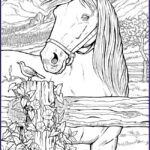 Coloring Pages Horses Unique Collection Pin By Jenny Culligan On Line S