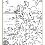 Creation Coloring Pages For Sunday School Awesome Collection Best 25 Creation Coloring Pages Ideas On Pinterest