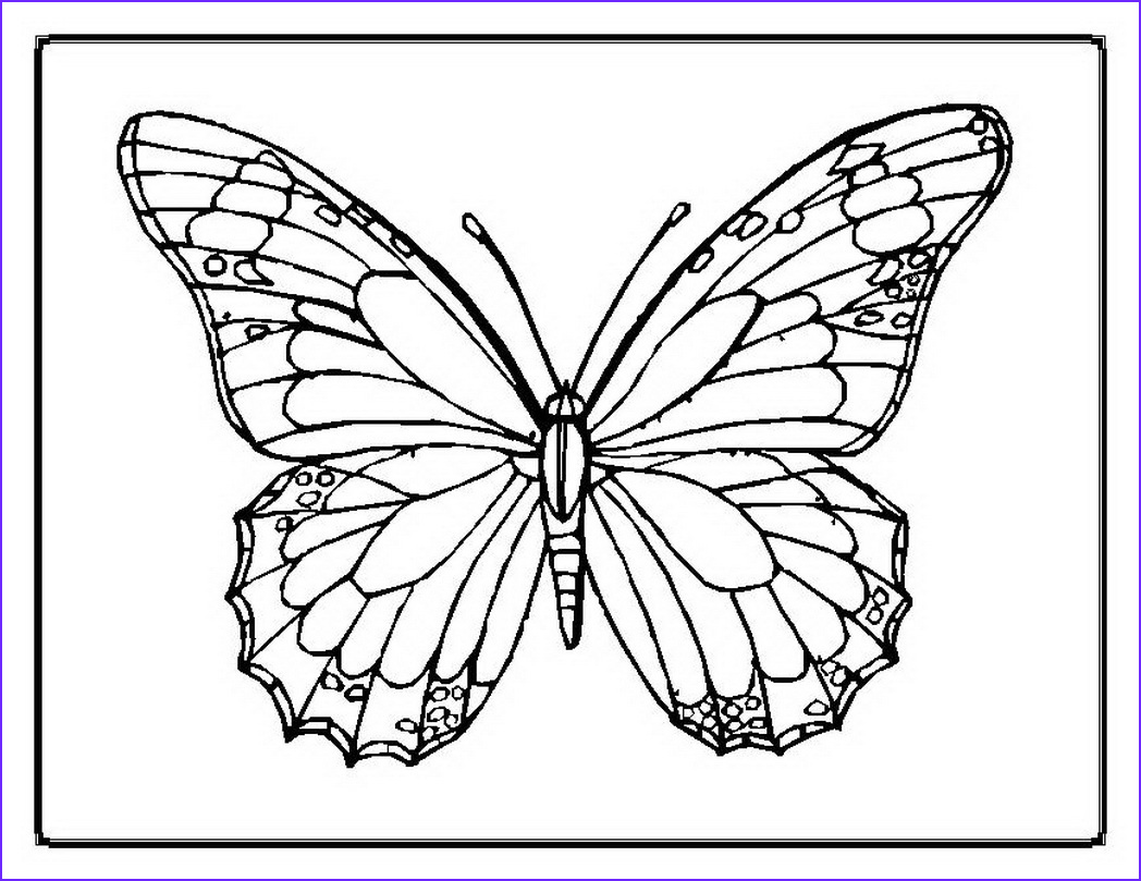 Dltk Coloring Pages Elegant Photos butterfly Pages Dltk Coloring Pages