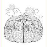 Fall Coloring Pages Free Printable Beautiful Gallery Fall Coloring Page Autumn Pumpkin Zentangle