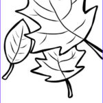 Fall Coloring Pages Free Printable Elegant Photos Best 25 Fall Coloring Pages Ideas On Pinterest