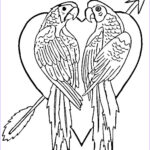 Free Coloring Pages For Toddlers Awesome Photos Free Printable Parrot Coloring Pages For Kids