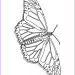 Free Coloring Sheets For Kids Best Of Photos Free Printable Butterfly Coloring Pages For Kids