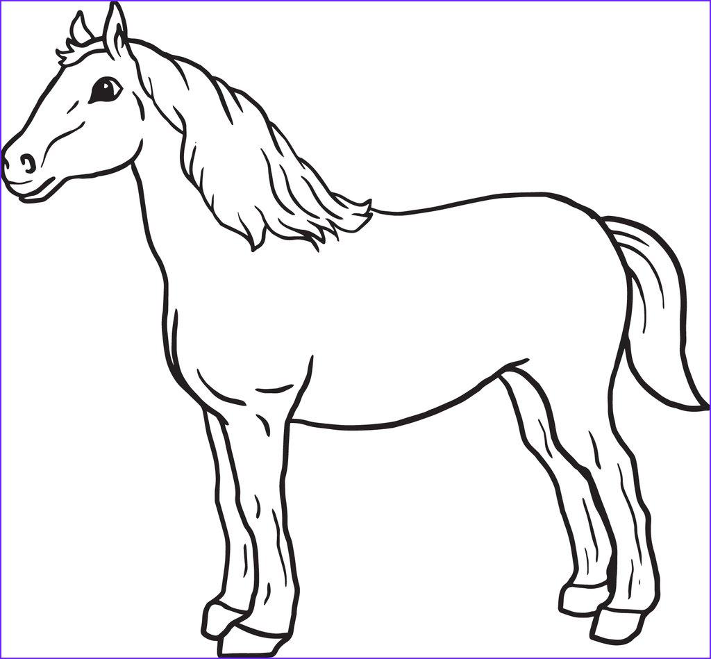 simple horse coloring page a4115