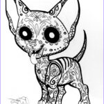 Free Printable Day Of The Dead Coloring Pages Luxury Photography Day The Dead Skull Coloring Pages Free Printable