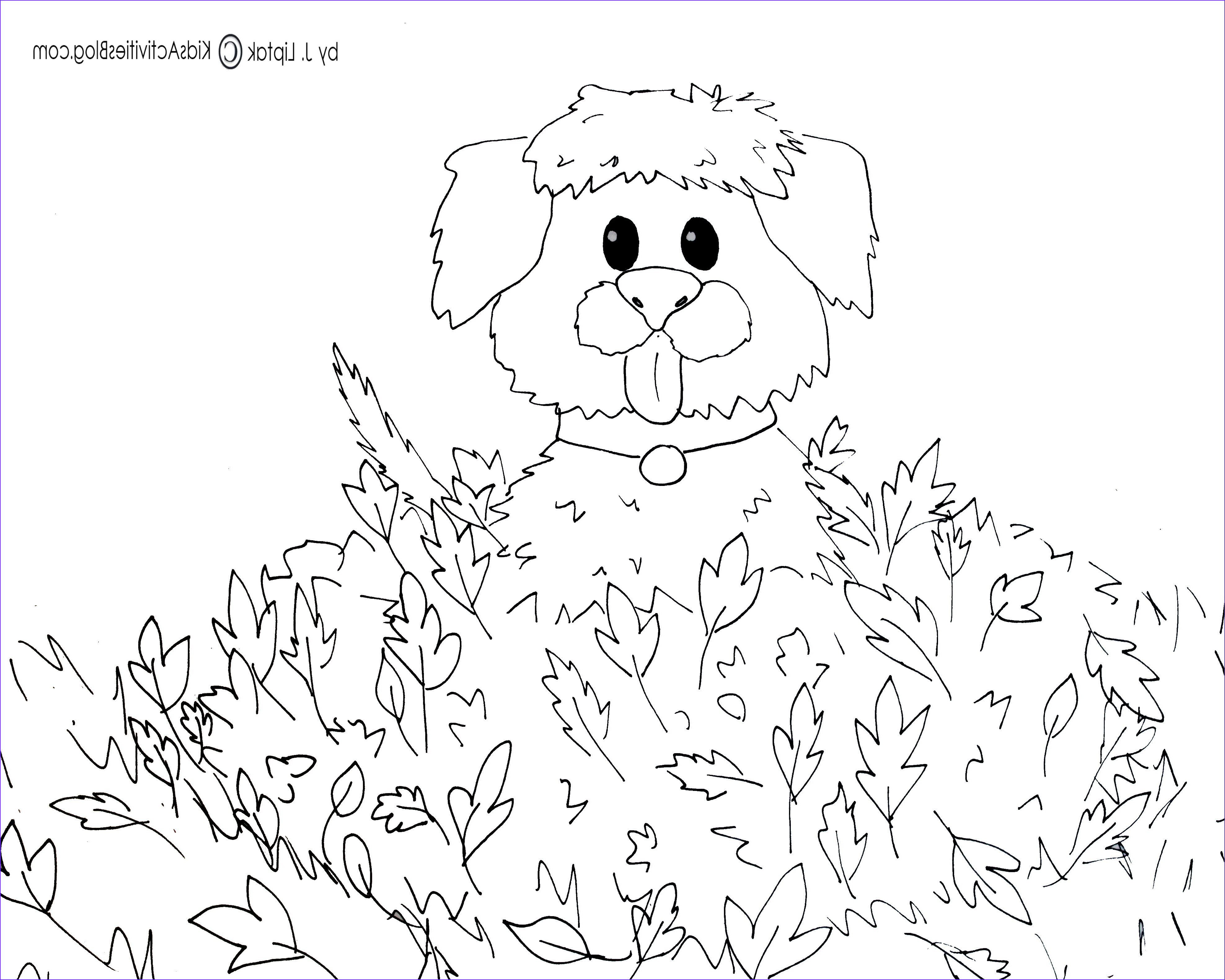 11 Best Of Free Printable Fall Coloring Pages Gallery